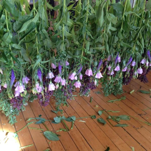 Creating our hanging flower instillation