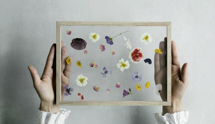 Pressed Flower Frame
