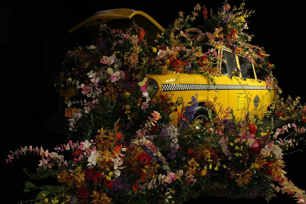 Flower Bomb Cab- B Floral