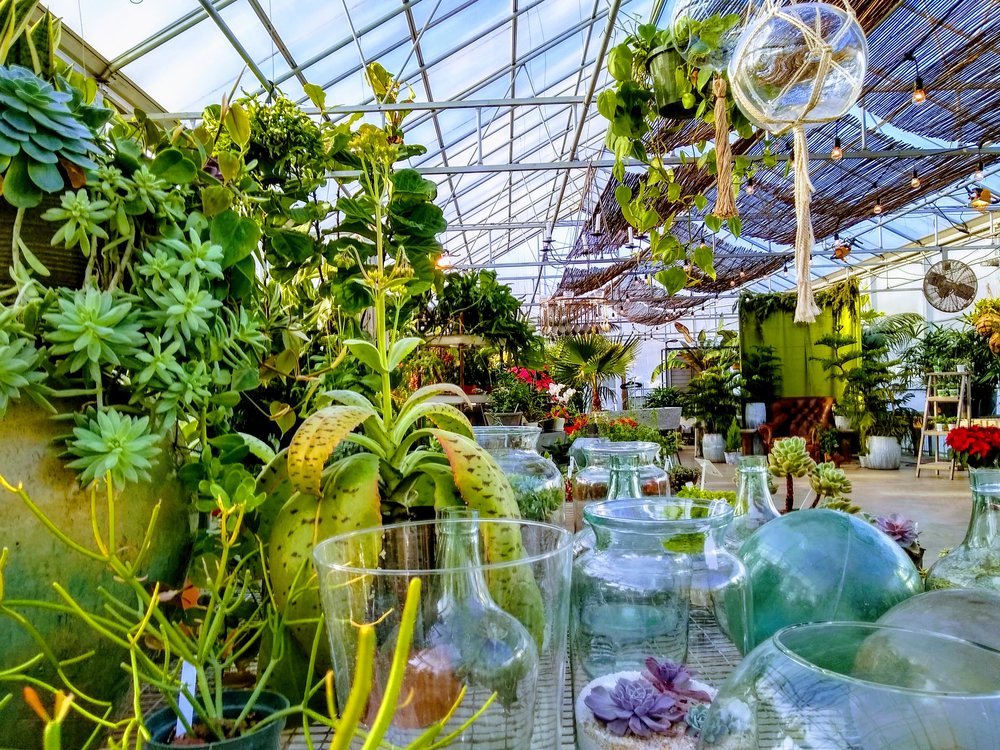 Herbary-Greenhouse-3-GlassnGreens.jpg