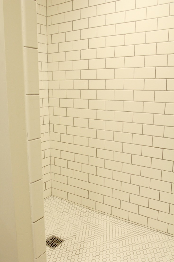 The Grit and Polish - Basement Shower Renovation.jpg