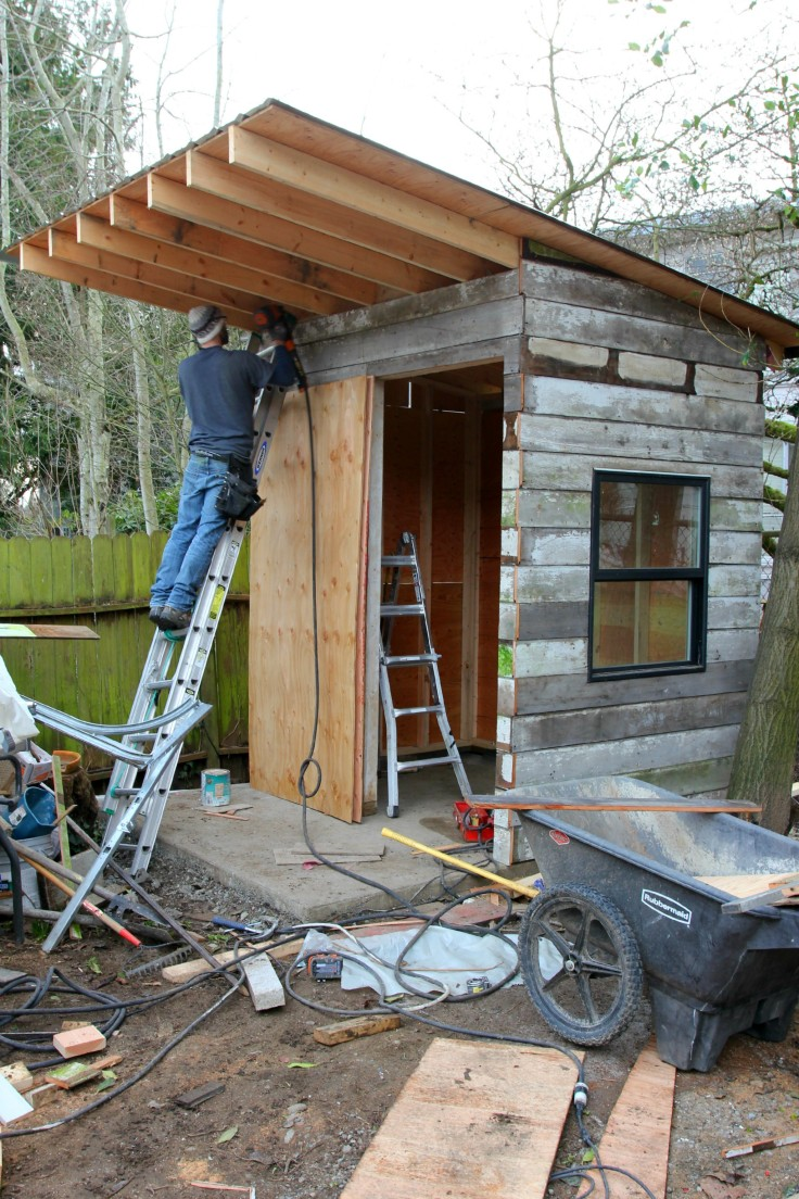 The Grit and Polish - Backyard Shed Siding