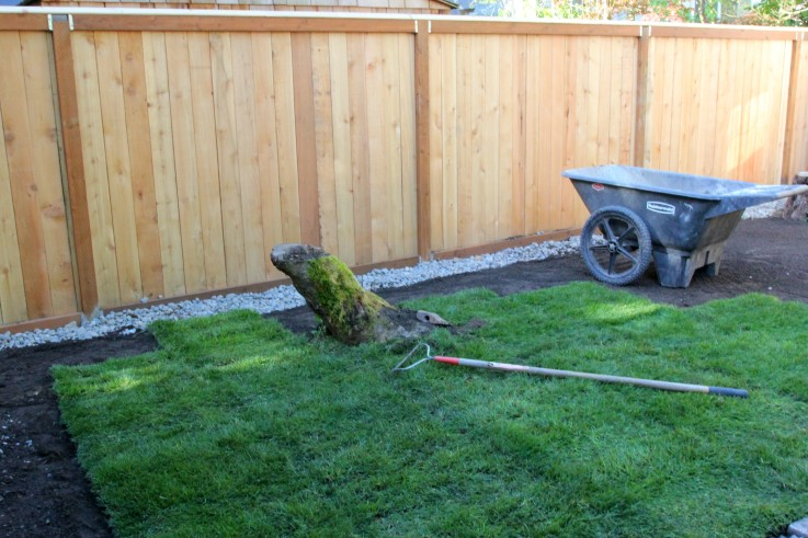 The Grit and Polish - Ravenna Backyard sod project