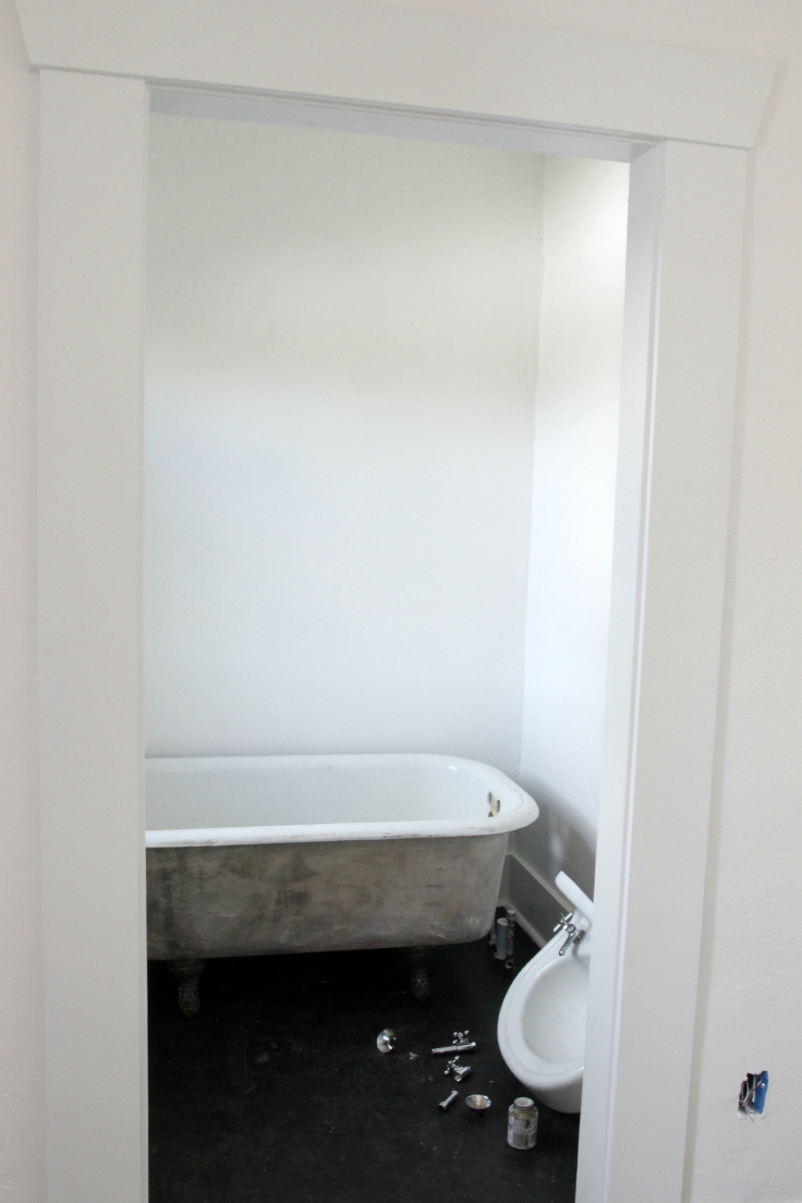 The Grit and Polish - Master Bath Plumbing Fixtures