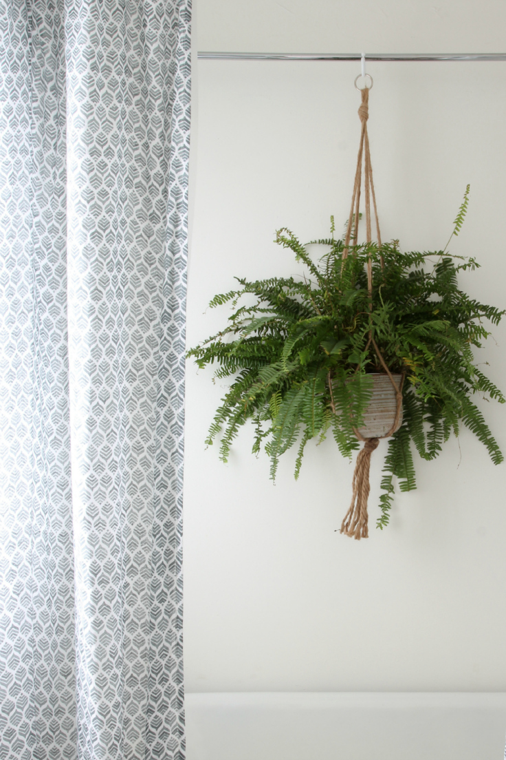 The Grit and Polish - Master Bathroom Renovation Plant