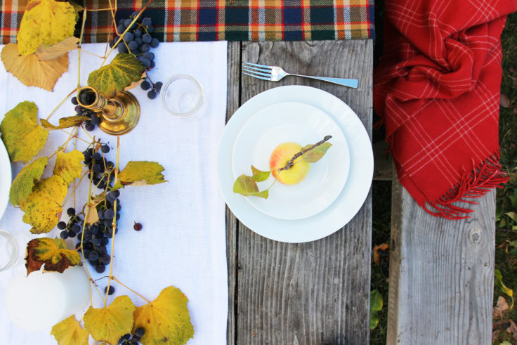 the-grit-and-polish-fall-tablescape-plate-setting