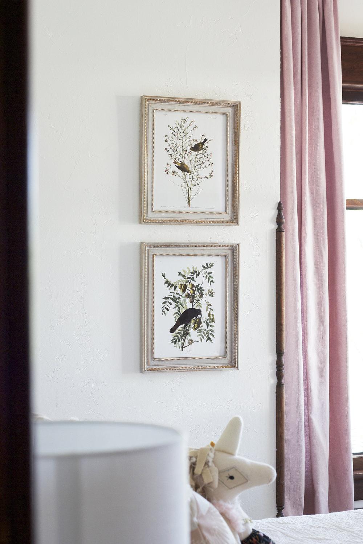 The Grit and Polish - Farmhouse Daphne Nursery Audubon Bird Art.jpg