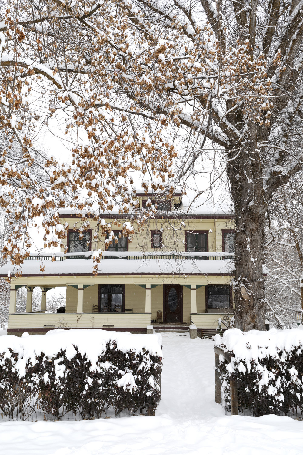 The Grit and Polish - Farmhouse in Snow 2019 SM.jpg