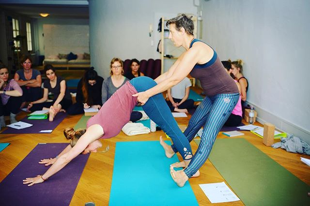During the first #yogateachertraining weekend @dhyayini_devi & @janetorze_yoga  explaining the first few adjustments in #downwardfacingdog.  More information www.yogateachertrainingbern.ch  #yogaeducation #yogateachertraining #yogateachertrainingbern #adhomukhavrksasana #adjustment #yogaadjustments #yogaschool #yogaasana #pranayama #meditation