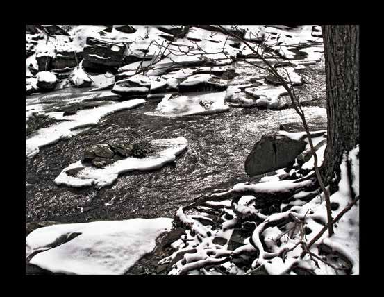 Rock Brook by Clem Fiori.jpg