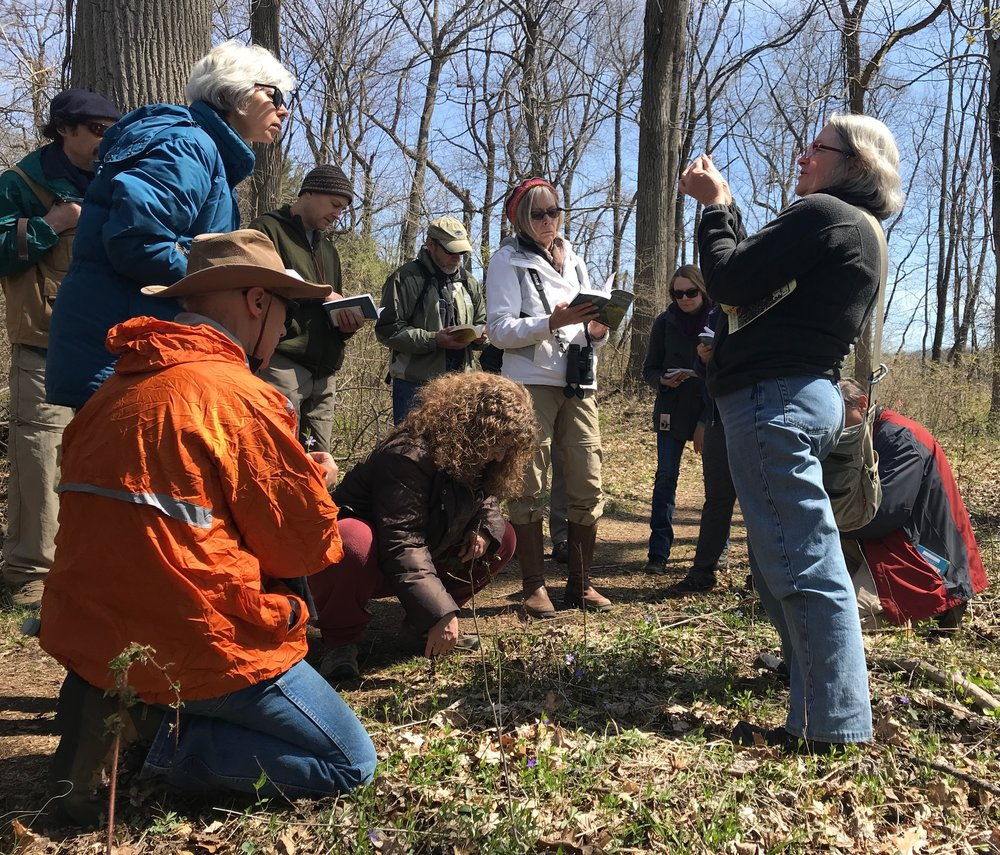 Pat Coleman leading a plant identification hike.