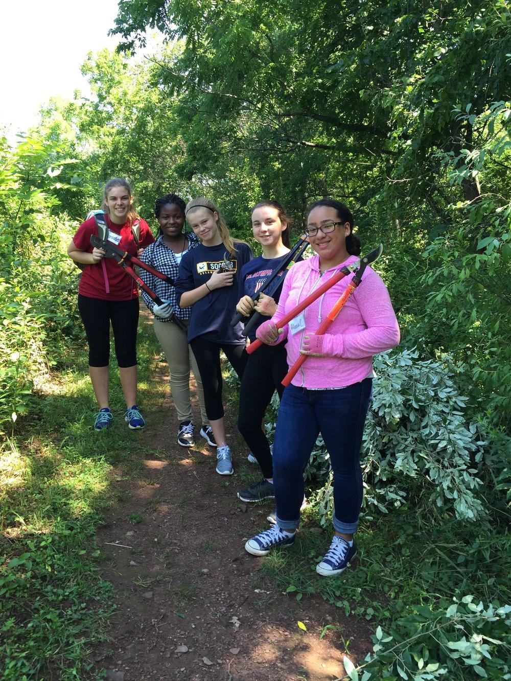 Volunteers working to remove invasive plant species.