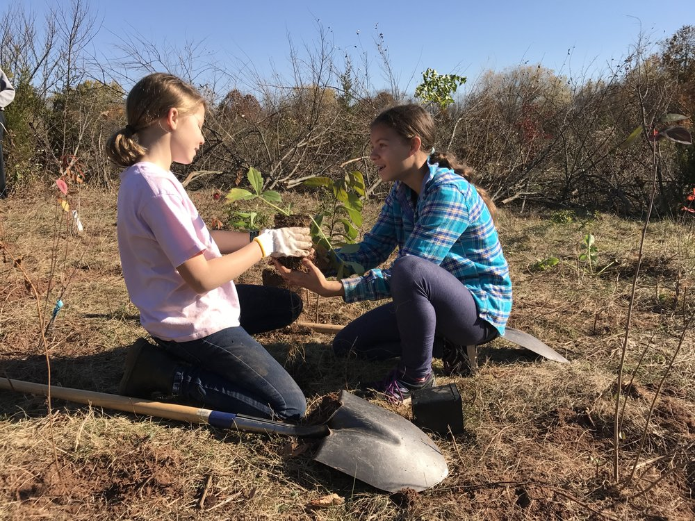 Volunteers planting native plants - Photo by Laurie Cleveland