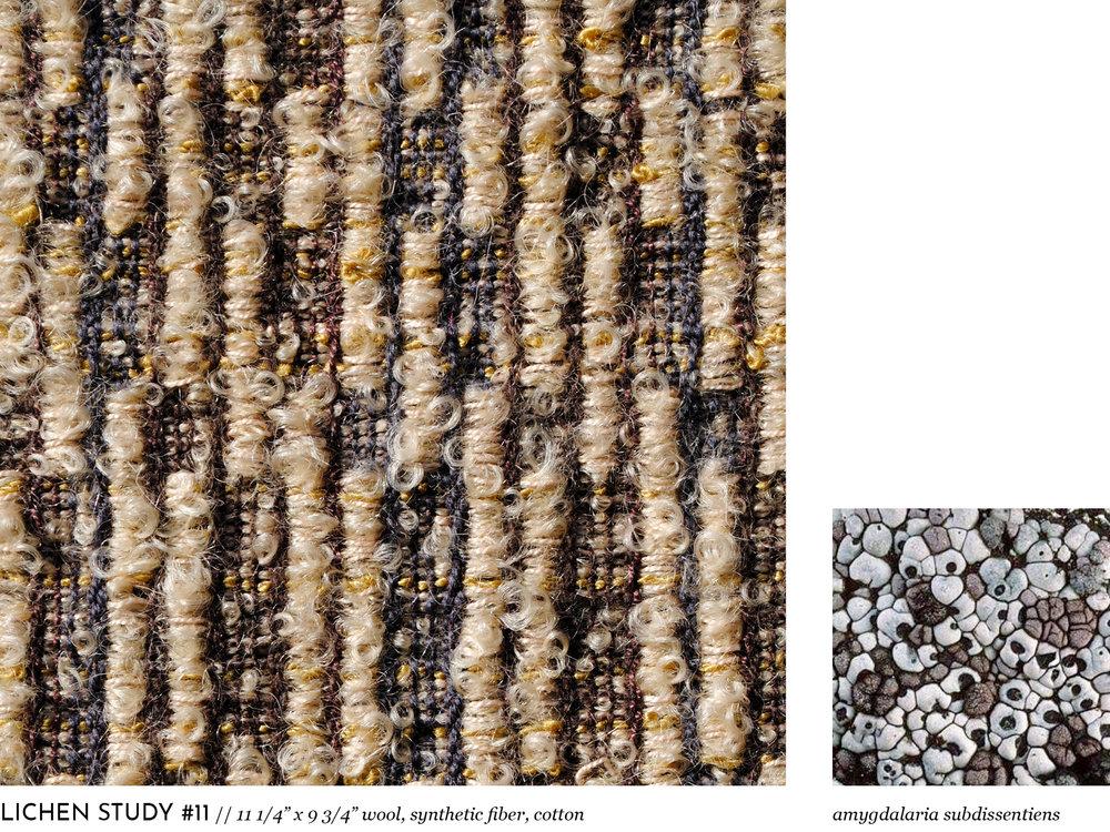 lichen11.jpg