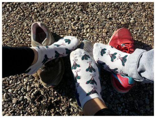 kale socks.jpg