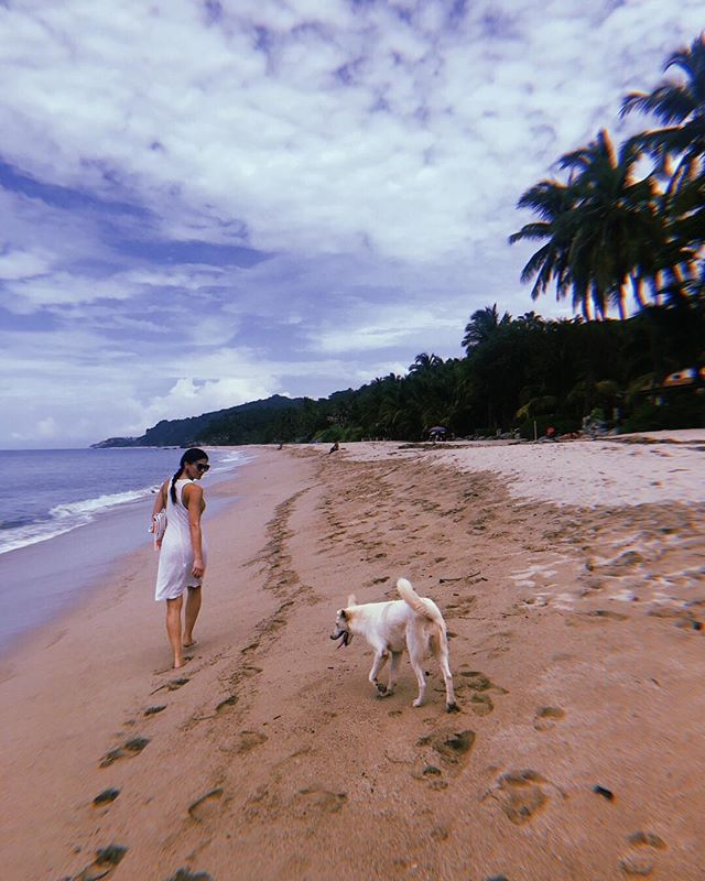 Fun fact:: KW is a low-key dog whisperer and a pied piper of Mexican dogs. More than than a few followed her around Sayulita as we scouted, explored and walked the beaches that we will be enjoying in June. When we immerse ourselves in  e x p e r i e n c e, there's no telling what we will discover ✨ 🐕  #movewith #experiencemw #sayulita