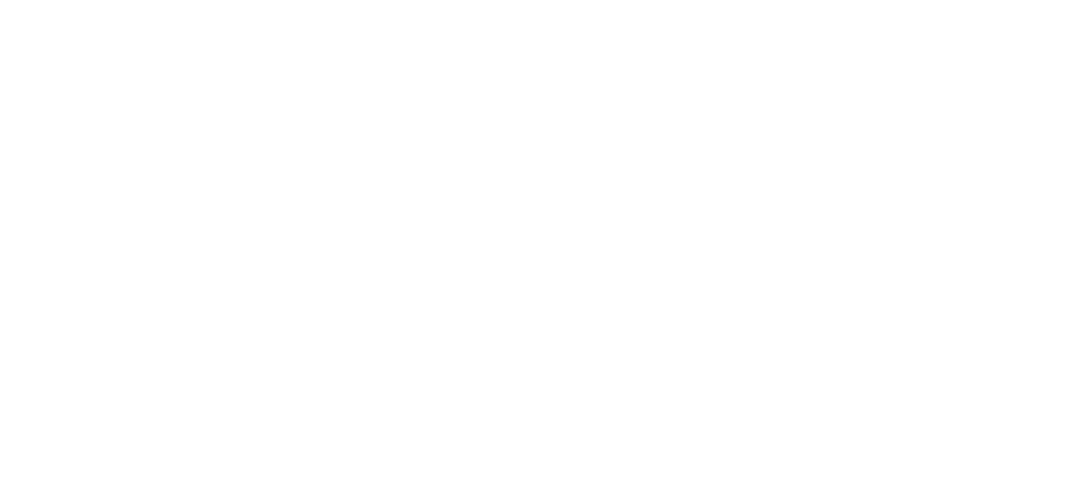 Downtown Washington Inc.