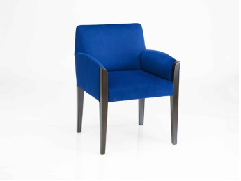 Sidhwani Dining Chair -