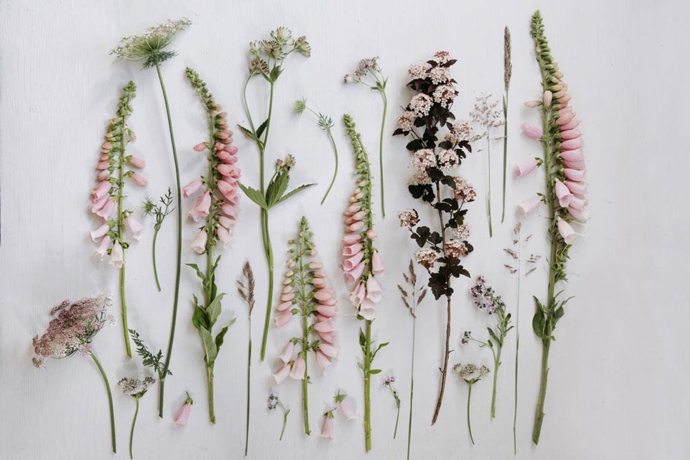 Pastel summer flowers flatlay