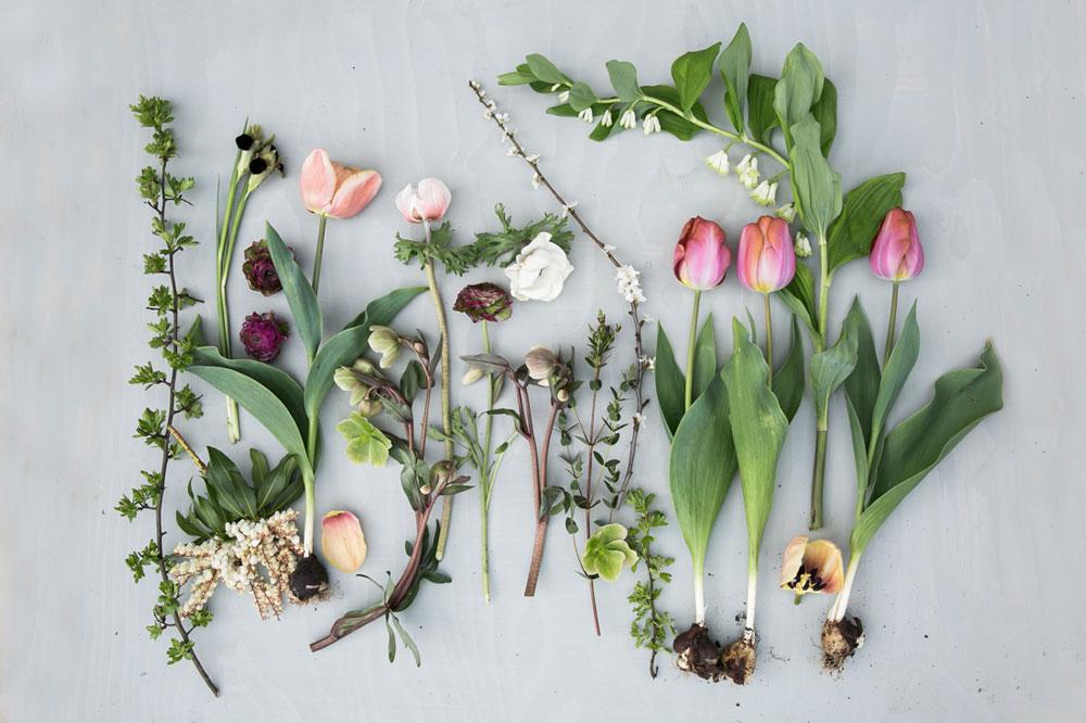 Spring flowers flatlay