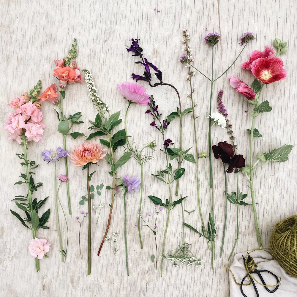 Flat lay of summer flowers, ribbons, florist tools on decking