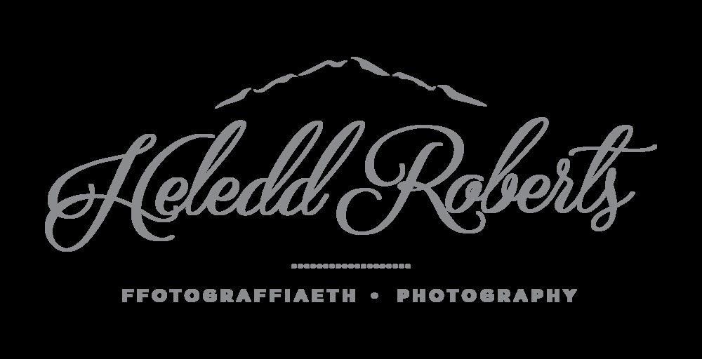 Heledd All Logos_grey solid portrait.png