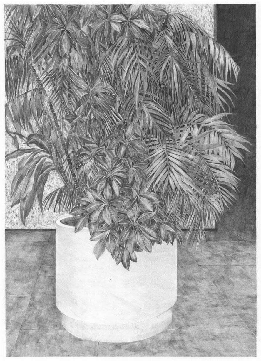 Hall B (plante 1).jpg