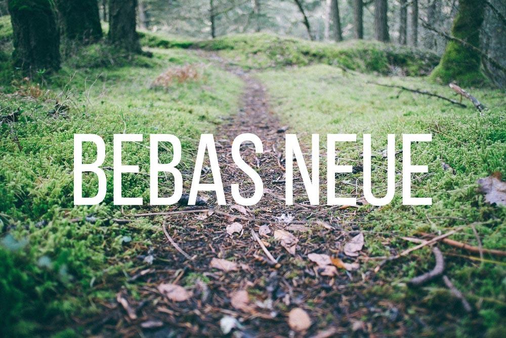 tumblr_n09uz1PnDN1r8b83ro5_1280.jpg