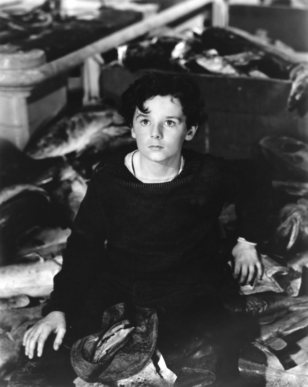 """The Face of Holden: Freddie Bartholomew in Captains Courageous  (1937)    In chapter 13 of  The Catcher in the Rye , when Holden is talking with a prostitute named Sunny, she says that Holden looks like the boy who fell off the boat in a movie she saw.   That movie, as identified by Peter Beidler in his book  A Reader's Companion to J.D. Salinger's """"The Catcher in the Rye"""" , is   Captains Courageous  (1937) starring Spencer Tracy.   The boy who fell off the boat was played by child-actor Freddie Bartholomew. Based on the reference from the book, Bartholomew was Salinger's model for Holden Caulfield.    Here's a picture of the actor closer to Holden's age .    Is this the face you had in mind? Let me know in the comments."""