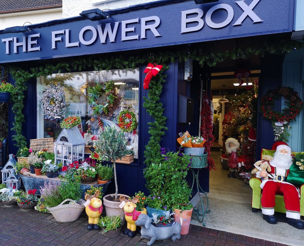 Our Story - There has been a much-loved florist on The Rise for over 30 years. Some of our customers have been coming through the door since they were children, and now pop in with their grandchildren to look at the flowers and see what's new in the shop. We re-opened The Flower Box in April 2017, and have been welcomed with open arms by the lovely local community. We are thrilled to be a new chapter in the history of The Rise, and it has been wonderful getting to know our regular customers and the flowers they like. We create beautiful flowers for any occasion, to any budget. Do feel free to drop in to talk to us about your event, place an order, pick up a plant or a unique gift – everyone is welcome, including your four-legged friends (treats offered if allowed!)