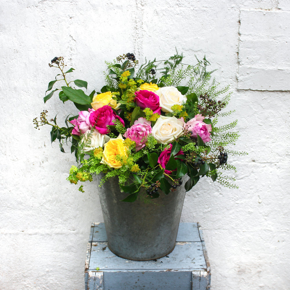 """""""Niamh"""", the Irish goddess of beauty and radiance is an apt name for these fabulous scented roses"""