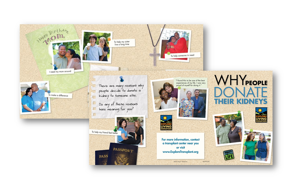 Educational materials, such as this brochure detailing reasons why living donors decide to donate a kidney to someone in need, incorporated photography and style guidelines established by the pioneering Explore Transplant patient education program.