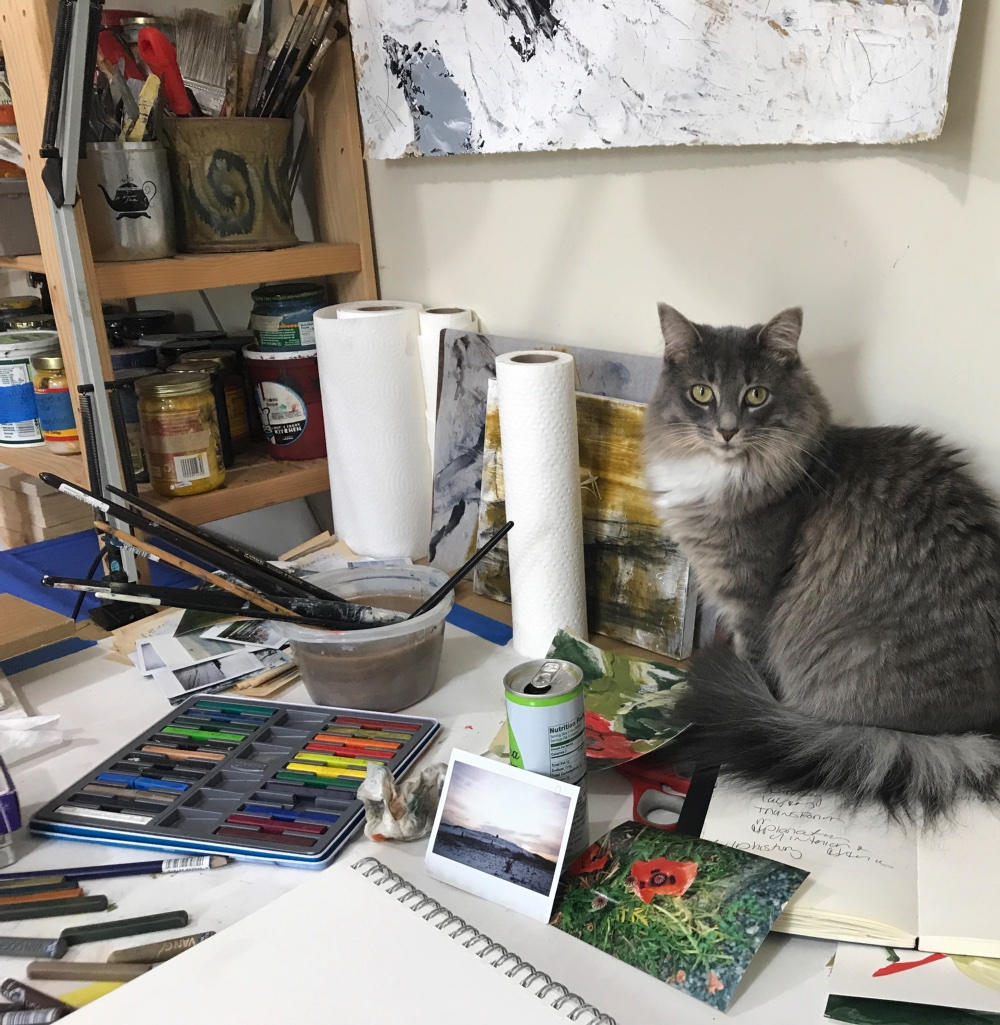 Kira Elliott's Studio Helper Neko