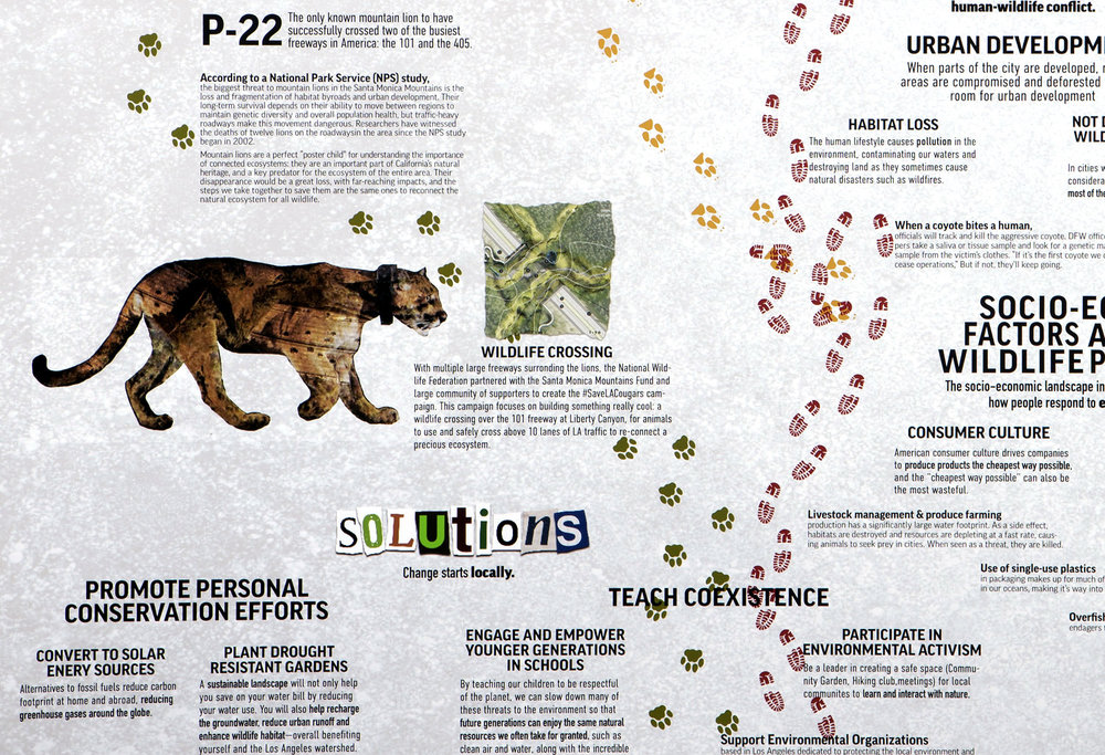 sustainable_cu1.jpg