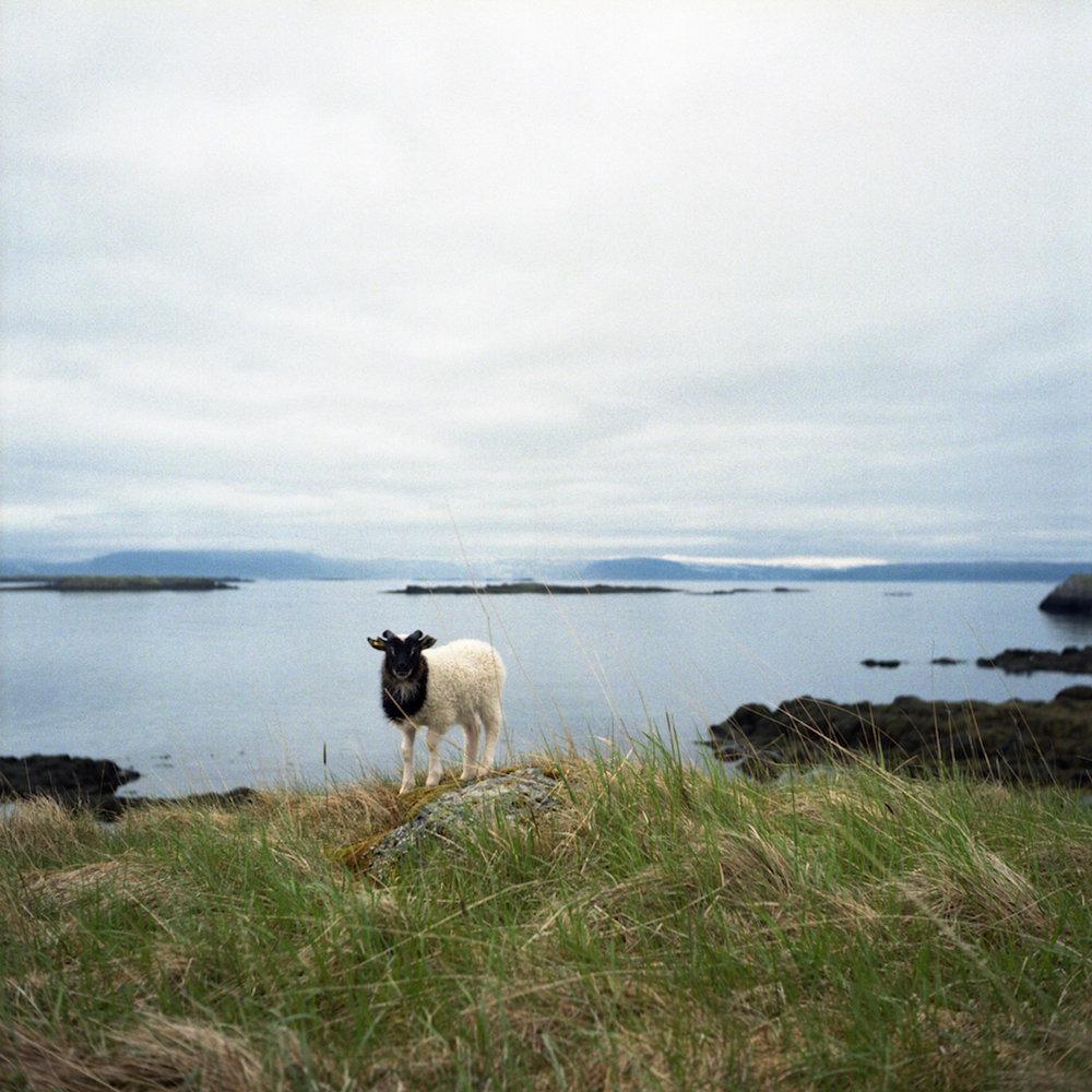 Islande2013_034 - copie.jpg