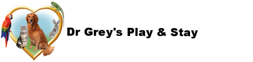 Dr. Grey's Play & Stay