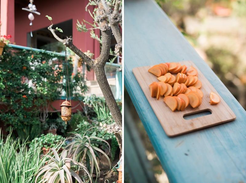 Pravinas-Garden-Malibu-Engagement-Carissa-Woo-Photography_0022