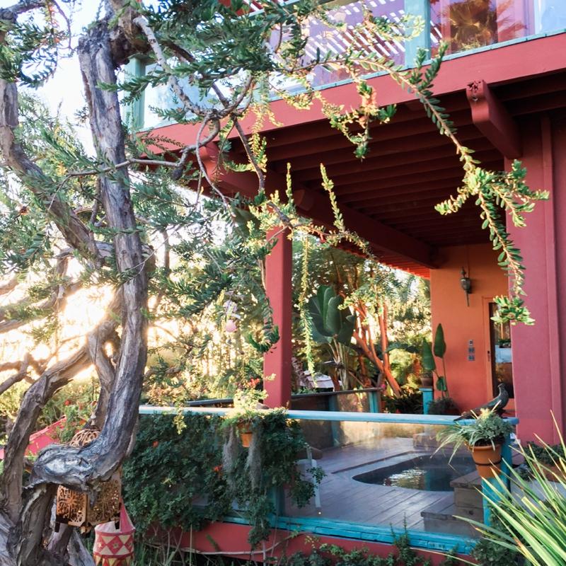 Pravinas-Garden-Malibu-Engagement-Carissa-Woo-Photography_0050