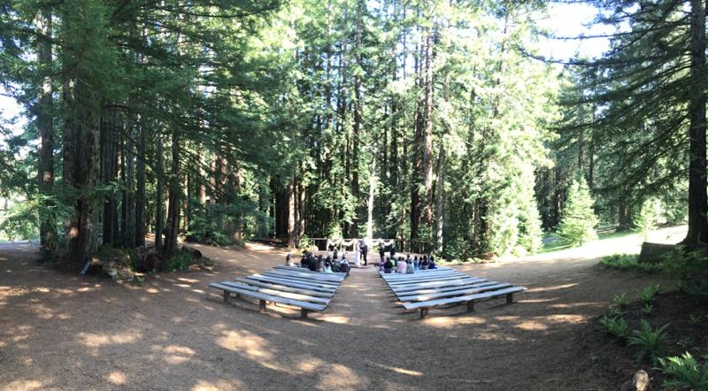 Redwood_Forest_Wedding_Kristen_Andrei_Carissa_Woo_Photography_0083