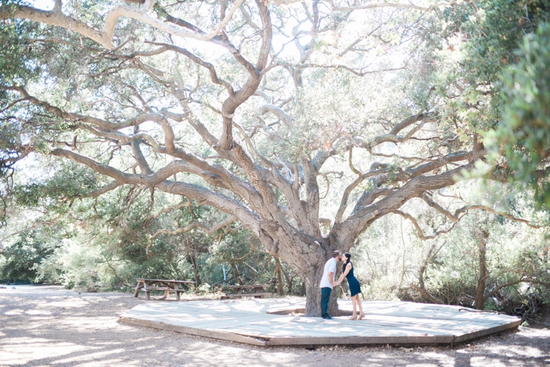 Temescal-Park-Pacific-Pallicades-Engagement-photographer-Carissa_Woo_Photography_0001