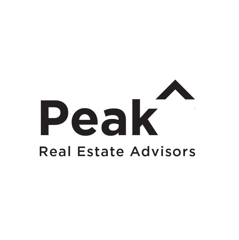 Peak logo concept