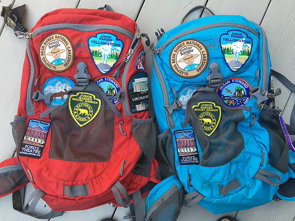 Junior Ranger Badges : Fresh Lemons Quilts