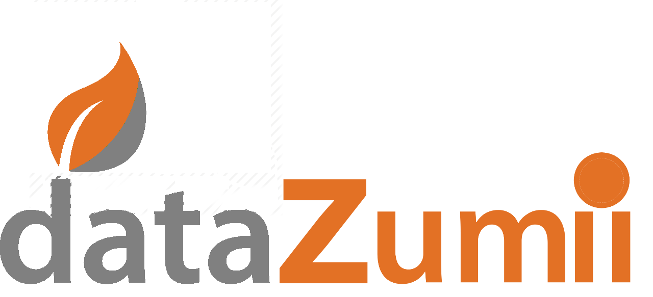 dataZumii Data Management Services