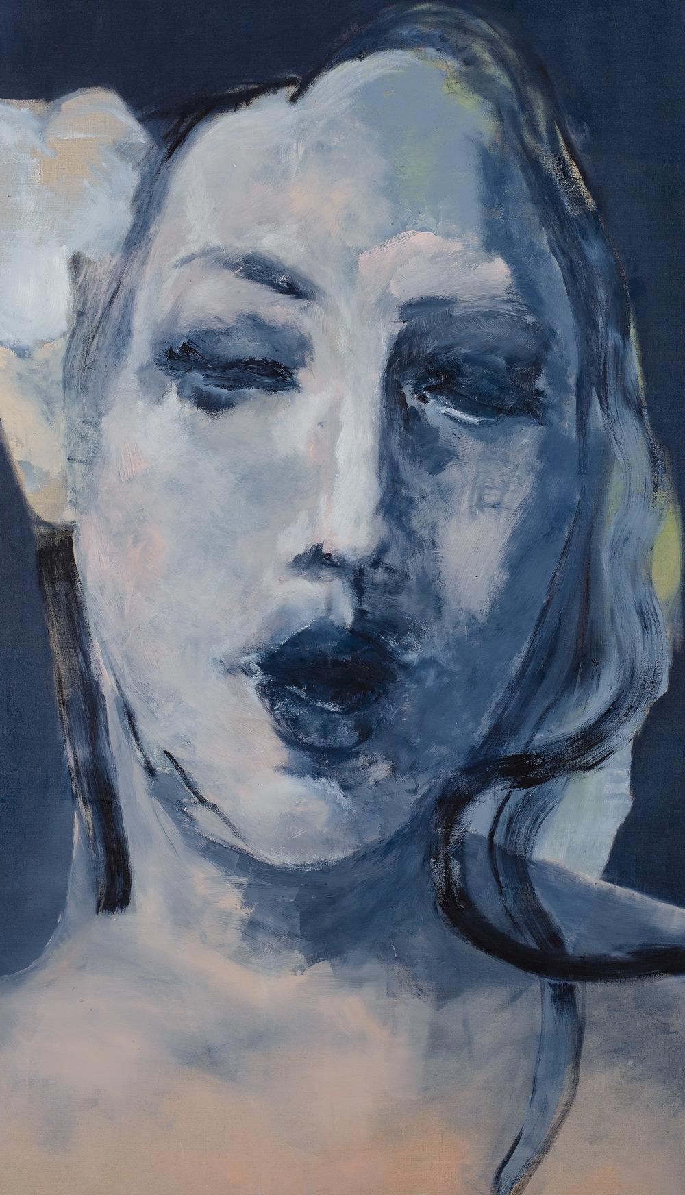 Sans titre (Figure 11) - 2011114 x 194 cm