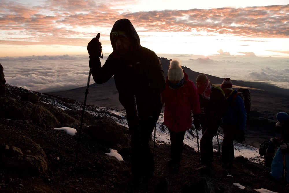 trekking to summit.jpg