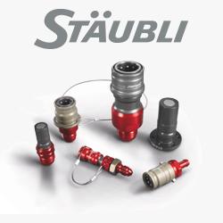 BSA Corse Staubli Racing
