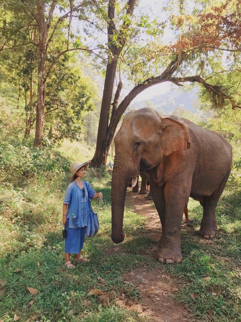 Chiang Mai Thailand Travel Guide - Claire Eliza 6.JPG