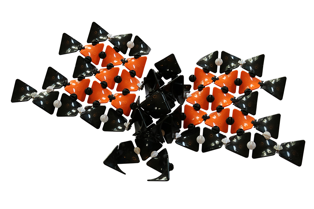 Hypar Butterfly -