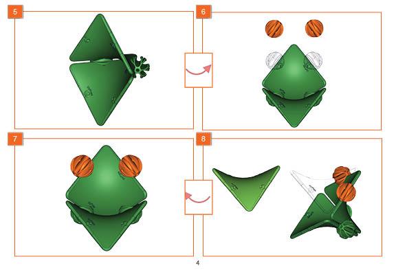 Frog Web Test4.jpg