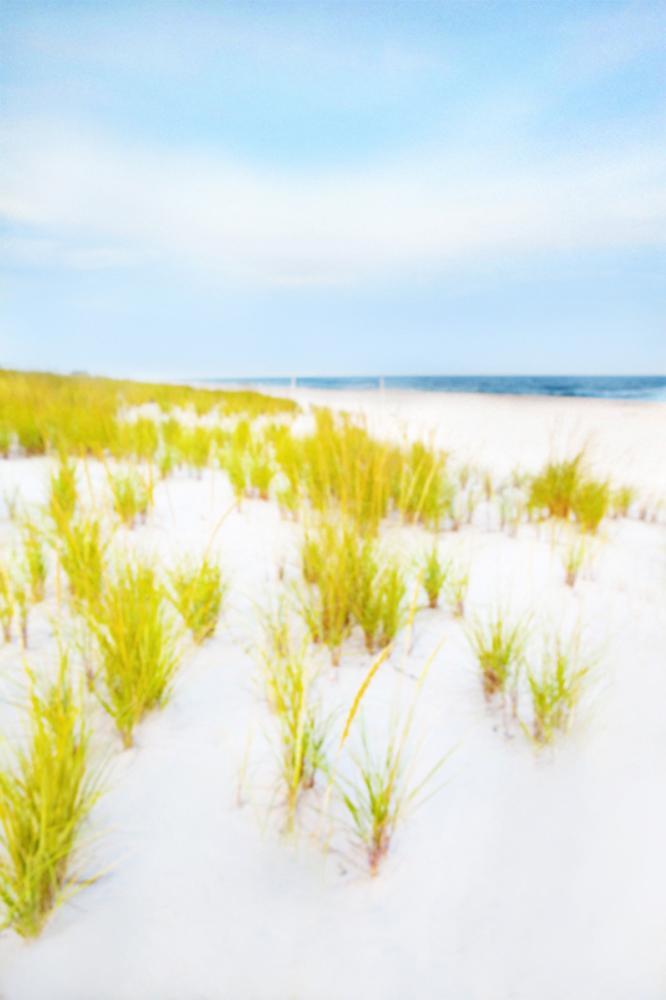 Hamptons, Dunes